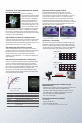Page 5 Preview of Panasonic AG-DVX100B Specifications