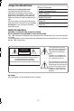 Panasonic Palmcoder Multicam PV-GS33 Manual, Page 2