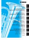 Yamaha Alto Horn, Baritone, Euphonium