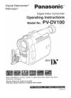 Panasonic Digital Palmcoder PalmSight PV-DV100
