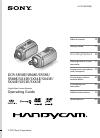 Sony HANDYCAM 4-170-099-12(1)